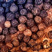 Black organic peppercorns