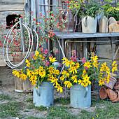 Sträuße mit Topinambur-Blüten, Spornblumen und Hagebutten