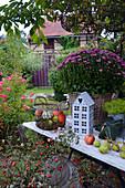 Herbstdekoration mit Chrysantheme und Korb mit Kürbissen, Strauß mit Hagebutten-Zweigen