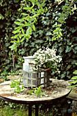 Weißer Strauß aus Herbstastern und Knöterich