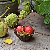 Zieräpfel im alten Backförmchen