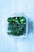 Herbs in a tupperware box