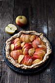 Coconut and apple tart