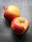 Pinova (Apfelsorte)