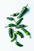 Roasted pepper (pimientos de padron)