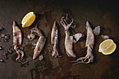 Raw uncooked squids calamari in row with ice and lemon over dark texture background