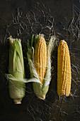Drei Maiskolben mit und ohne Blätter