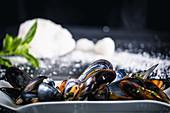 Gedämpfte Miesmuscheln mit thailändischer Sauce
