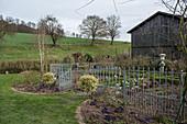 Bauerngarten mit Metallzaun im Vorfrühling