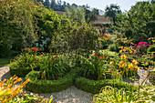 Knotengarten mit blühenden Taglilien
