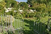 Blick durchs offene Gartentor auf Beet mit Rosen, Hortensie 'Annabelle' und Funkie