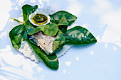 Bass fillet in fig leaves