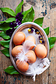 Brown eggs with feathers and horned flowers on a metal tray