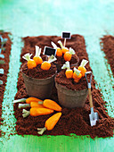 'Ripe carrots in a pot' cake