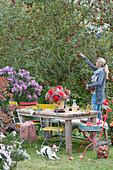 Sitzgruppe im Garten, Frau bei der Apfelernte, Hund Zula
