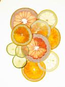 Zitrusfrüchtestilleben mit Zitrusfruchtscheiben