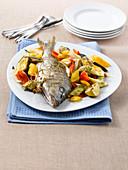 Marmorbrasse mit mediterranem Gemüse und Oregano