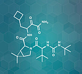 Boceprevir hepatitis C virus drug, molecular model