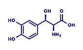 Droxidopa hypotension drug, molecular model