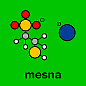 Mesna chemotherapy adjuvant and mucolytic drug molecule
