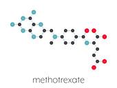 Methotrexate chemotherapy drug, molecular model