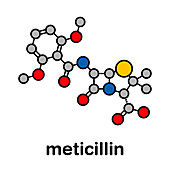 Meticillin antibiotic drug, molecular model