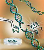 Genetic engineering, conceptual illustration