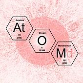 Chemical elements atom, illustration