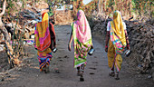 Women going to the toilet in rural India