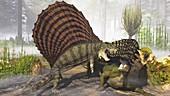 Dimetrodon and Edaphosaurus dinosaurs fighting, illustration