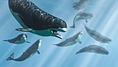 Livyatan prehistoric whales, illustration