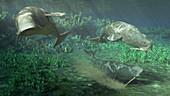 Odobenocetops prehistoric marine mammal, illustration