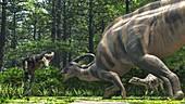 Parasaurolophus and Gorgosaurus dinosaurs fighting, illustra