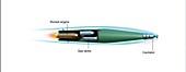 Supercavitating torpedo, illustration