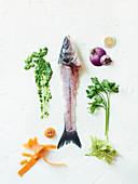 Gemüseabfälle, Fischkarkasse, Kräuter und Saucenklecks
