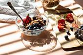 Granola muesli with yoghurt and berries
