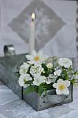 Weißer Strauß mit Wald-Windröschen, Hornveilchen, Schleifenblume und Gänseblümchen