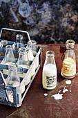 Pflanzendrinks als Milchersatz