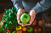 A pair of hands holding a green apple