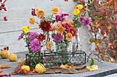 Chrysanthemenblüten und Knöterich in Flaschen und Gläsern