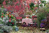 Sitzplatz im Herbstgarten am Beet mit Aster, Dahlie, Rispenhortensie, Herbstanemone, Spindelstrauch, Reitgras und Federborstengras