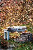 Bank mit Fell als Sitzplatz vor Zierapfelbaum, Korb mit Äpfeln