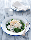 Fried monkfish on spinach with pepper-cream sauce