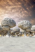 Forest of brains, conceptual image