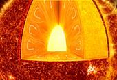 Internal structure of the Sun, illustration