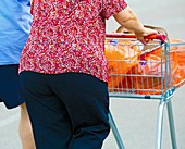 People pushing a shopping trolley