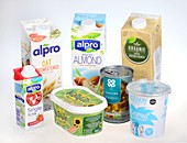 Plant-based dairy product alternatives