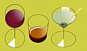 Alcoholic drinks, illustration