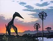Hatzegopterix pterosaur at Dawn, illustration