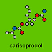 Carisoprodol drug molecule, illustration